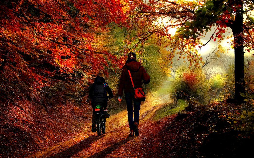 5 skvělých tipů, jak se vypořádat s podzimním splínem a depresí